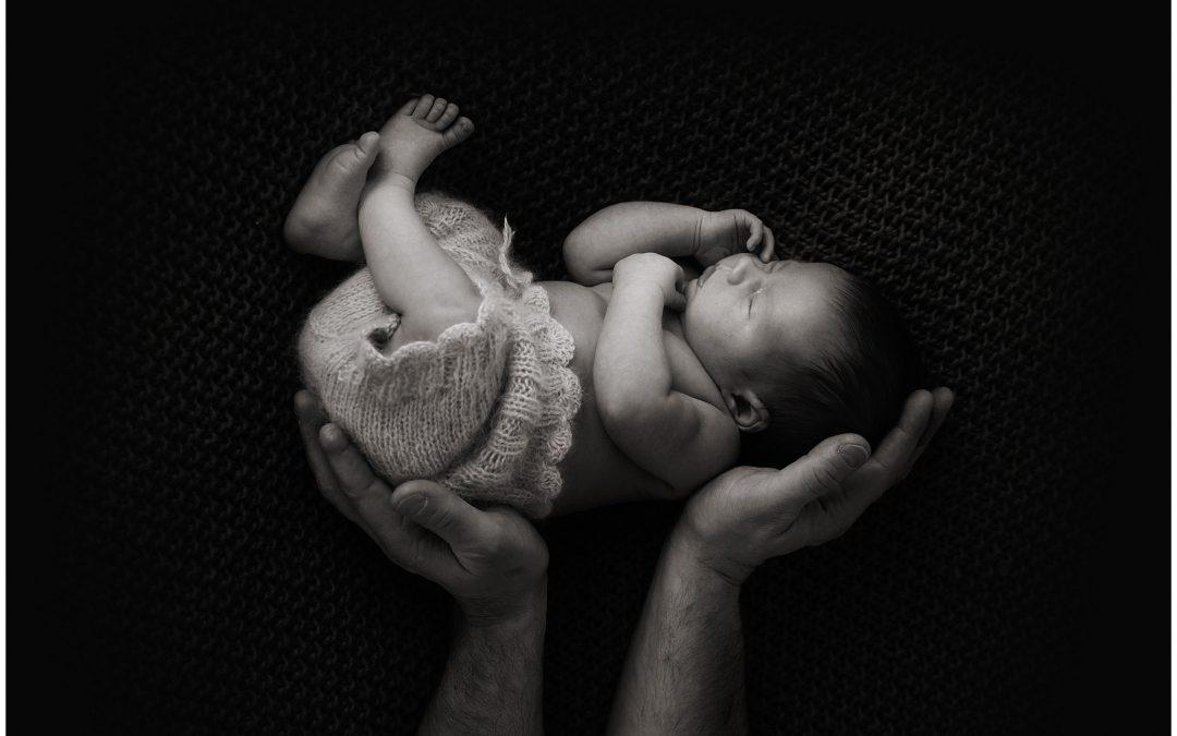 Vennaraasuke / newborn photography